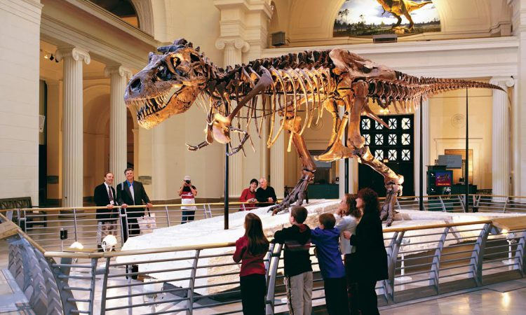 The Best Chicago Museums