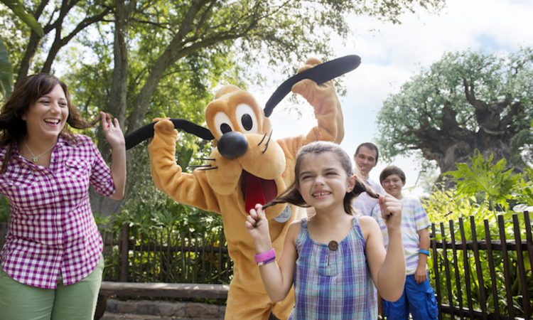 How to Meet Disney World Characters
