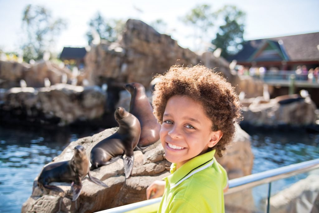 A young boy smiles in front of Sea Lions at SeaWorld San Diego, among the best spring break destinations for families
