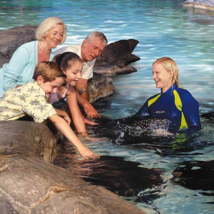Gatlinburg Ripley's Aquarium