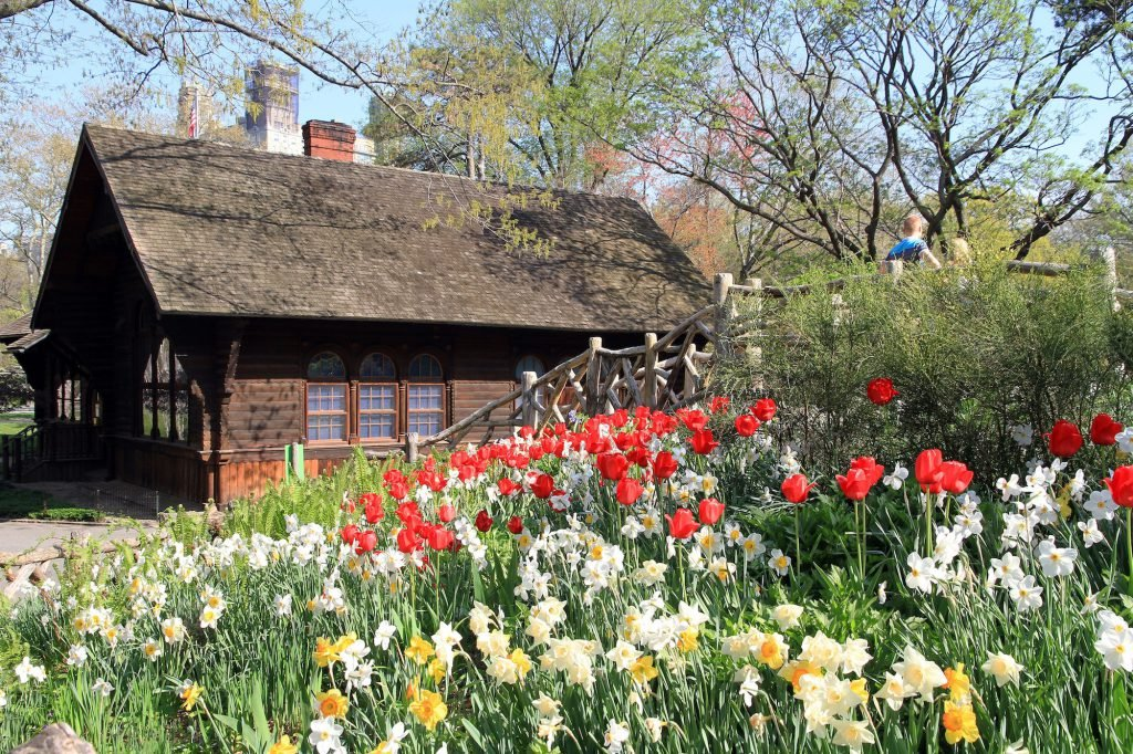 When looking for things to do in Central Park, take a stroll through Shakespeare Garden