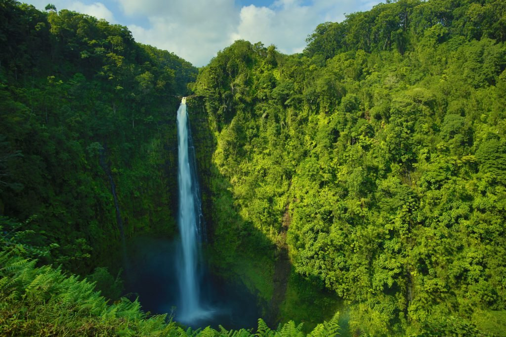 Make sure Akaka Falls is part of your Big Island 5-day itinerary