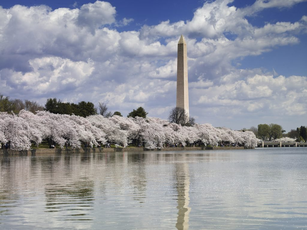 Visiting Washington DC on a budget is easy with our tips