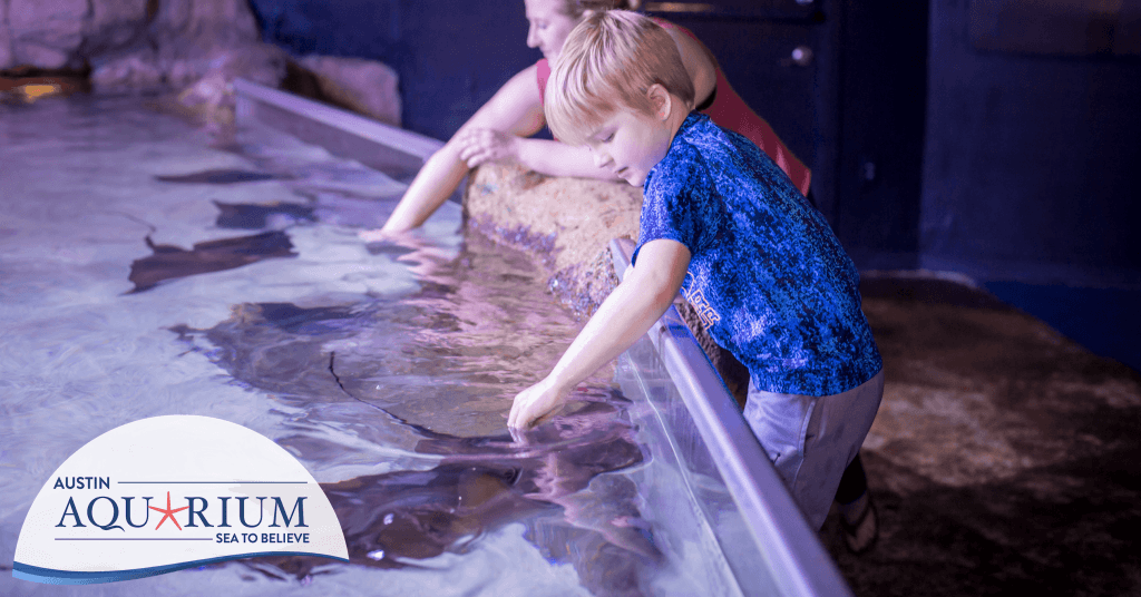 A day at the aquarium is one of the best things to do in Austin!